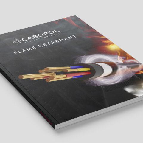 cabopol magazine mockup